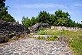 Burg-Hopfen-JR-E-5340-2021-06-28.jpg