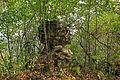 Burgruine Stallegg 05 2015-08.jpg