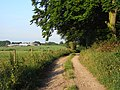 Byway, Wootton St Lawrence - geograph.org.uk - 1556123.jpg