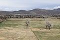 C Hill Trail , Carson City - panoramio (6).jpg