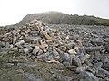 Cader Idris - geograph.org.uk - 1314850.jpg
