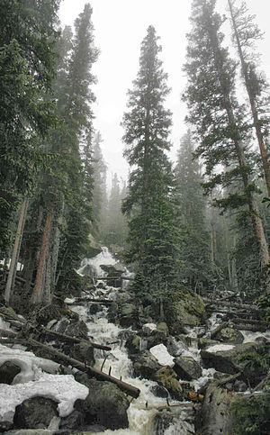 Wild Basin, Rocky Mountain National Park - View of Calypso Cascades