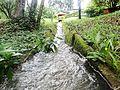 Caminho das águas para o lago.jpg