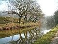 Canal Holden Silsden - geograph.org.uk - 595684.jpg
