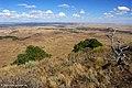 Capulinvolcano vista.jpg