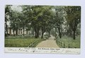 Carnegie Library, Port Richmond, Staten Island (view of path through park to the library) (NYPL b15279351-104862).tiff