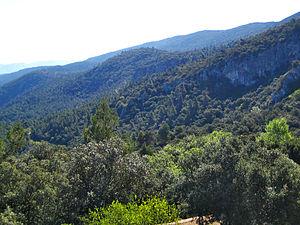 Font Roja Natural Park - Vista del parc