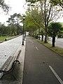 Carril bici en Caranza.JPG
