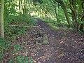Causey stones (2), Binns Lane, Southowram - geograph.org.uk - 260845.jpg
