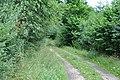 Ceļš, Džūkstes pagasts, Tukuma novads, Latvia - panoramio (7).jpg