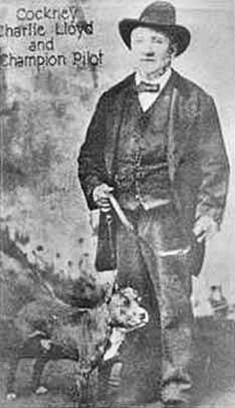 """Bull and Terrier - Charlie Lloyd with their dog """"Pilot"""" from Walsall. USA, circa 1881"""