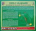 Cheile Valisoarei - Cheile Aiudului (panou informativ).jpg