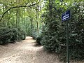 Chemin du Crépuscule3.jpg