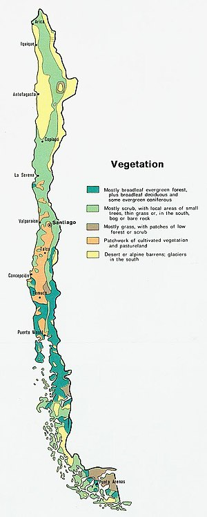 Geography of Chile - Vegetation map of Chile