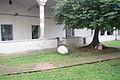 Chiostro e Albero Secolare.jpg