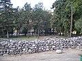 Cipreses. - panoramio (21).jpg