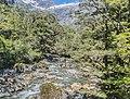 Cleddau River NZ 01.jpg