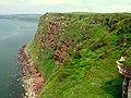 Cliffs overlooking Saltom Bay - geograph.org.uk - 615817.jpg