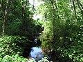 Cochato River, Randolph MA.jpg