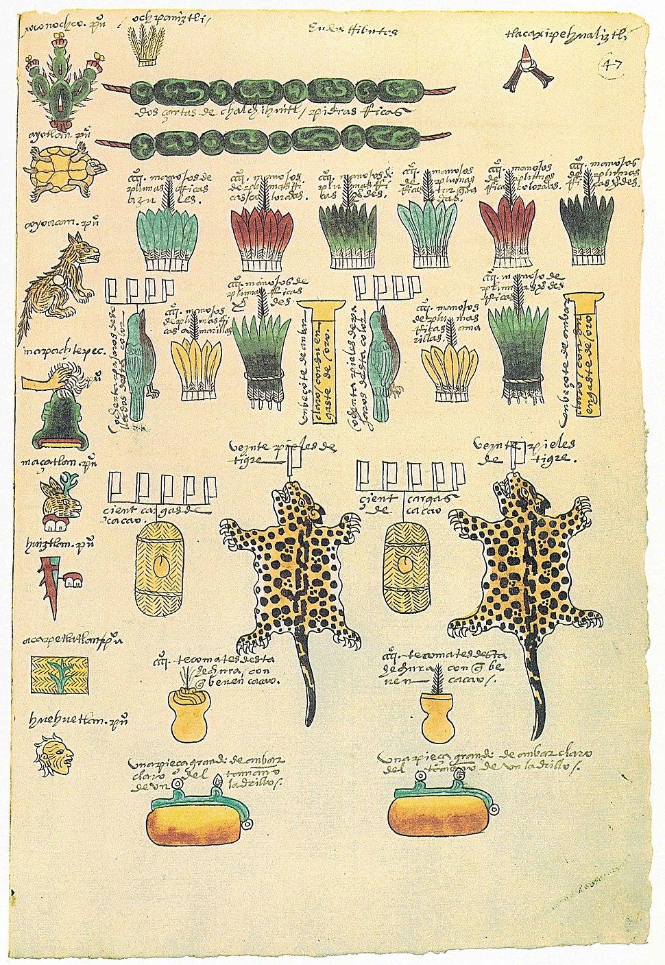 Codex Mendoza folio 47r