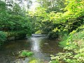 Cound Brook from Longnor Bridge.jpg