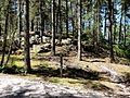 Coyolles (60), la cave du Diable en forêt de Retz 1.jpg