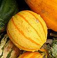 Cuisine of Belgium - IMG 3640 - gourd3.jpg