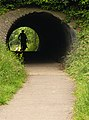 Cycle Track Tunnel - geograph.org.uk - 463134.jpg
