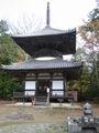 Cyokoji05.JPG