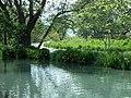 Daio Wasabi Farm 大王山葵農場 - panoramio.jpg