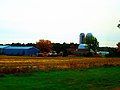 Dairy Farm South of Adams - panoramio.jpg
