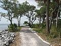 Daufuskie Island - pathway.jpg