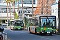 Day 3 - bus (46722343451).jpg