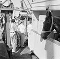 De paarden voor de koninklijke calèche bij aankomst in de haven van Willemstad, Bestanddeelnr 252-2734.jpg