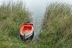 Debno lake, Steszew (4).JPG