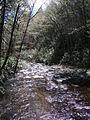 Delaware Water Gap National Recreation Area - Pennsylvania (5677788365).jpg