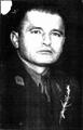 Delko Bogdanić.png