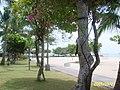 Denpasar, Denpasar City, Bali, Indonesia - panoramio - 우한길(HK Woo) (2).jpg