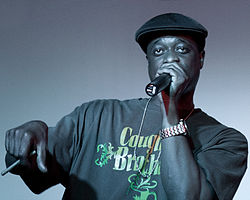 Devin the Dude performing in Pearland, TX in 2010