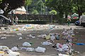 Dia nacional de Galicia 2018 - Lixo - Basura - Litter - 04.jpg