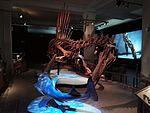 Dinosaurier Berlin naturkunde - 3.jpeg