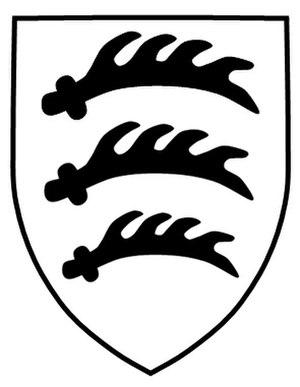 25th Panzergrenadier Division (Wehrmacht) - 25th Panzergrenadier Division insignia