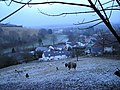 Dolgran Village - geograph.org.uk - 1101903.jpg