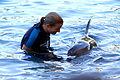 Dolphin Cove 47.jpg