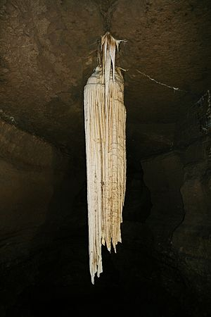 Doolin - The Great Stalactite at Doolin Cave