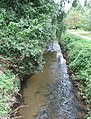 Downstream from the footbridge - geograph.org.uk - 541848.jpg