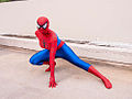 DragonCon 2012 - Marvel and Avengers photoshoot (8082144604).jpg