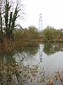 Drain emptying into River Yare - geograph.org.uk - 1671078.jpg
