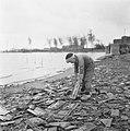 Drooglegging van de Wieringermeerpolder Jongen houdt een dakpan vast staande op, Bestanddeelnr 900-8335.jpg