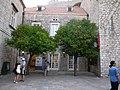 Dubrownik - drzewka mandarynkowe - panoramio.jpg